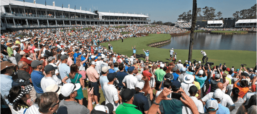 The Players Championship Fan Fanatics Journey