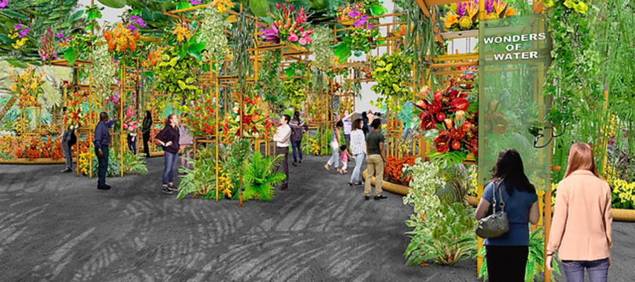 Philadelphia Flower Show to Explore The Wonders of Water