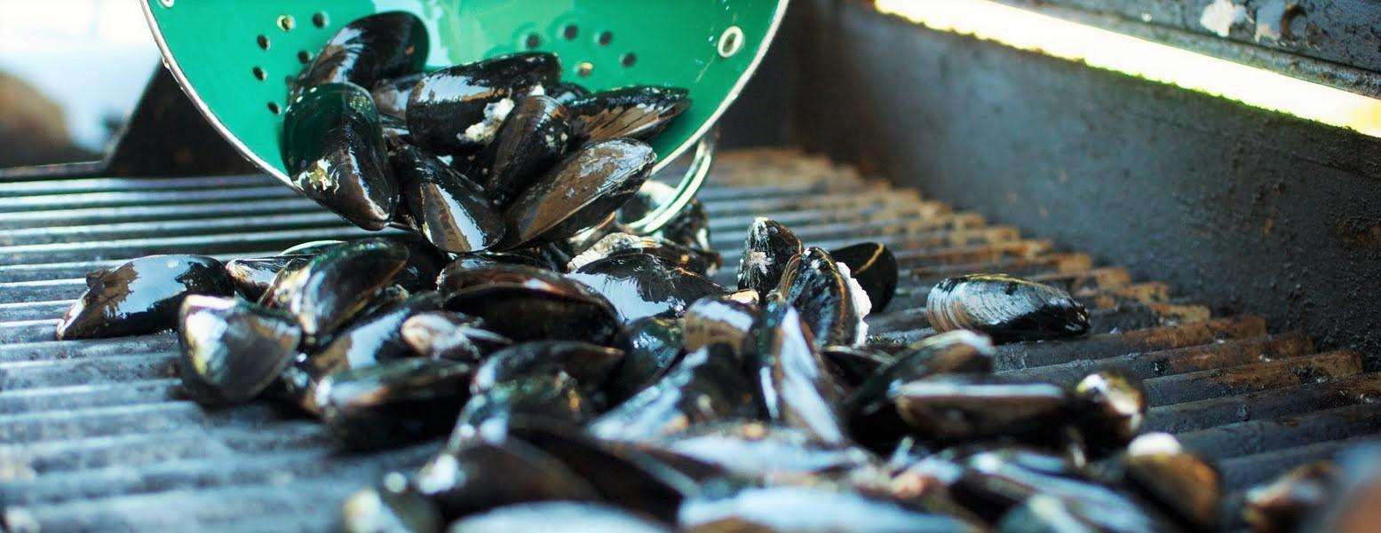 BBQ 101: How to Grill Mussels