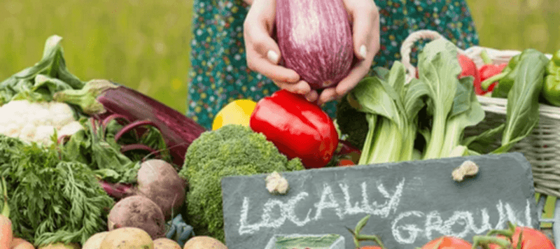 Mount Holly Farmers Market In The Heart Of Downtown