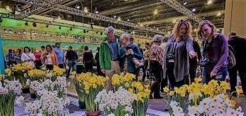 Dutch Inspiration In Philly: The Philadelphia Flower Show