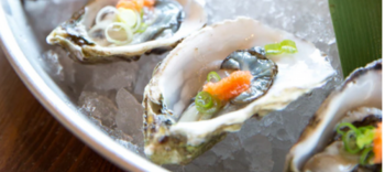 The 10 BestWhere to Eat Dollar Oysters in Philadelphia