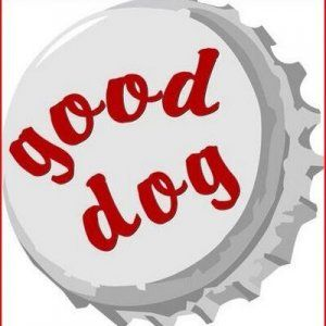 Good Dog Bar - Philadelphia, PA 19102